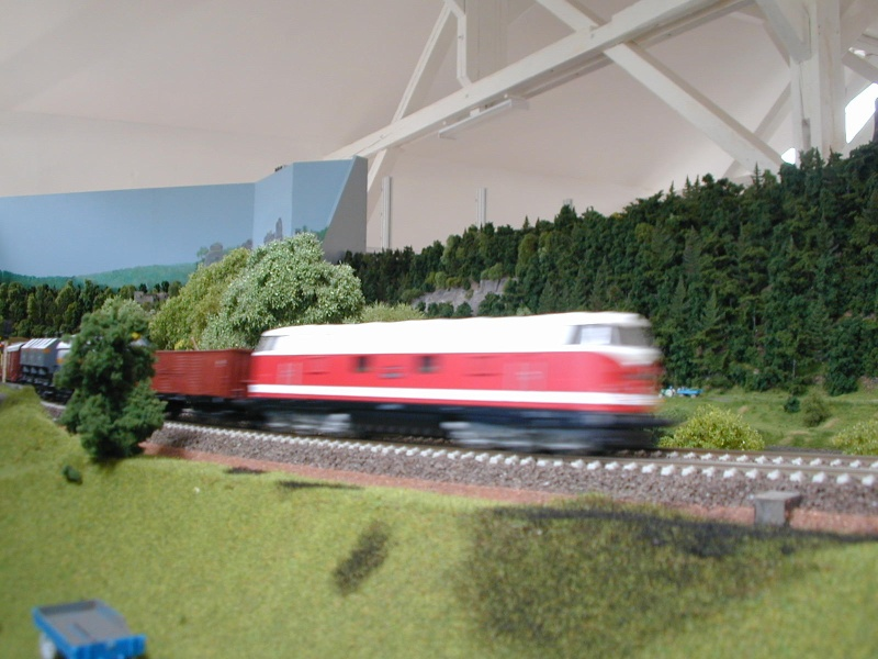 Miniatur Elbtalbahn in Königstein (Sachsen) Dscn0327