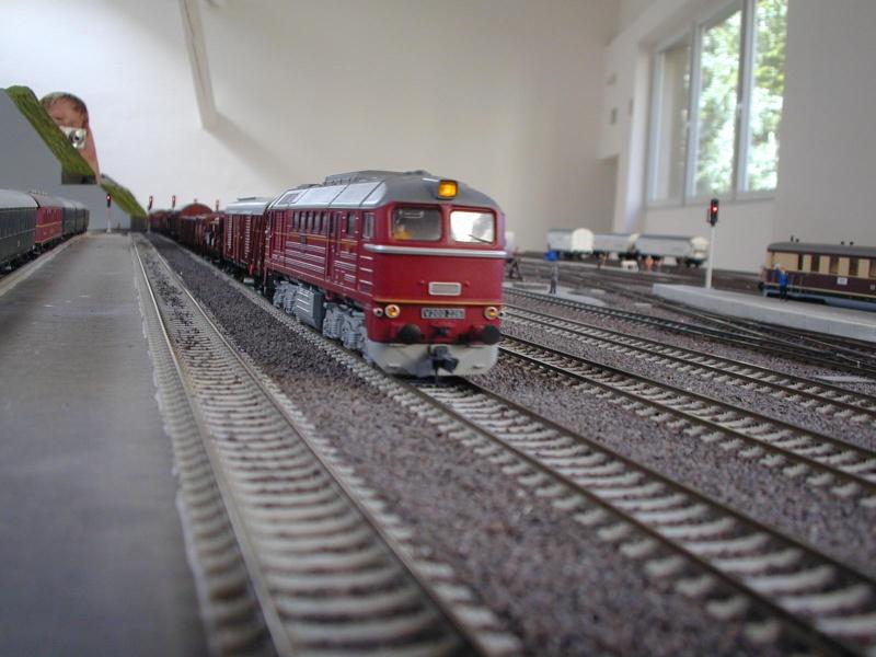 Miniatur Elbtalbahn in Königstein (Sachsen) Dscn0337