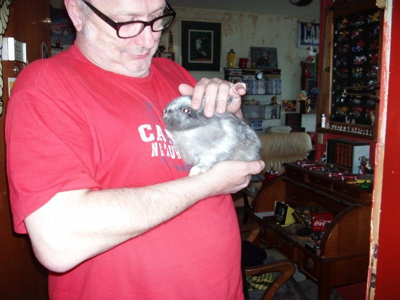 SOS pour un lapinou trouvé aujourd'hui Imag0016