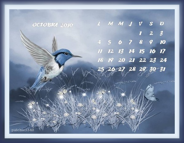Défis calendrier théme automne [FINI] - Page 2 Caloct10