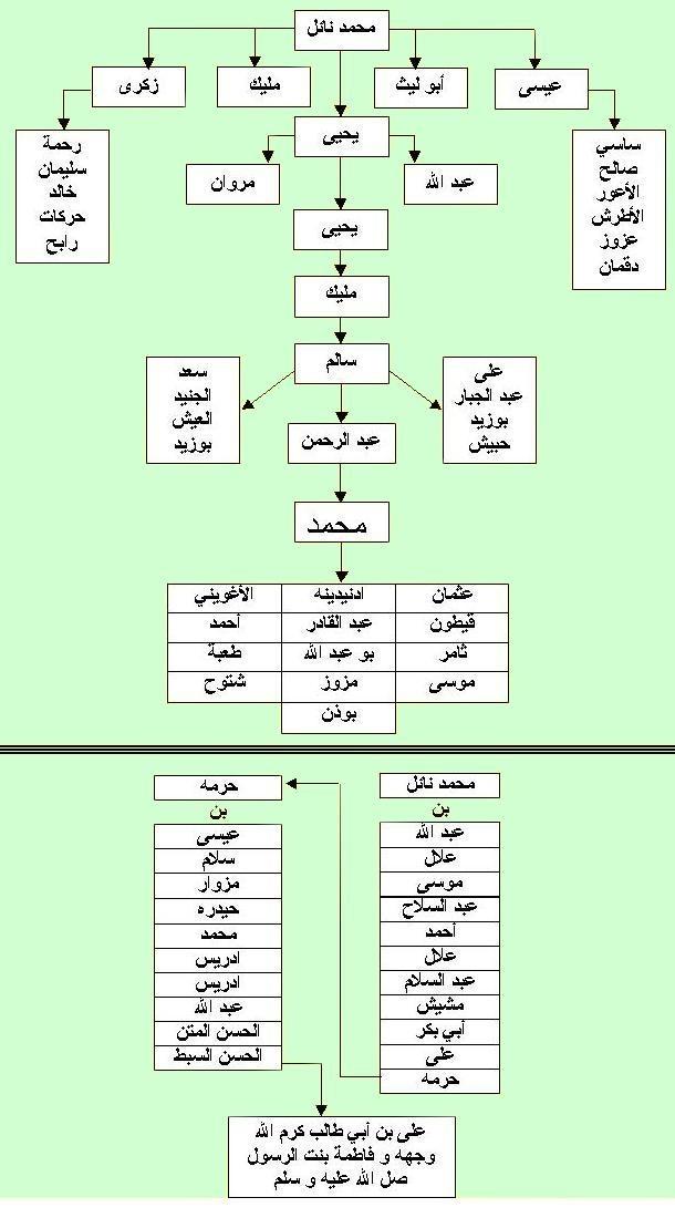 شجرة محمد نايل  Oooo_o10