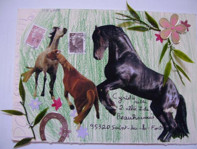 Galerie Chevalresque - Merci Maelys ! Imgp0810