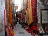 La cité des alizés et son influence sur la créativité Autres10