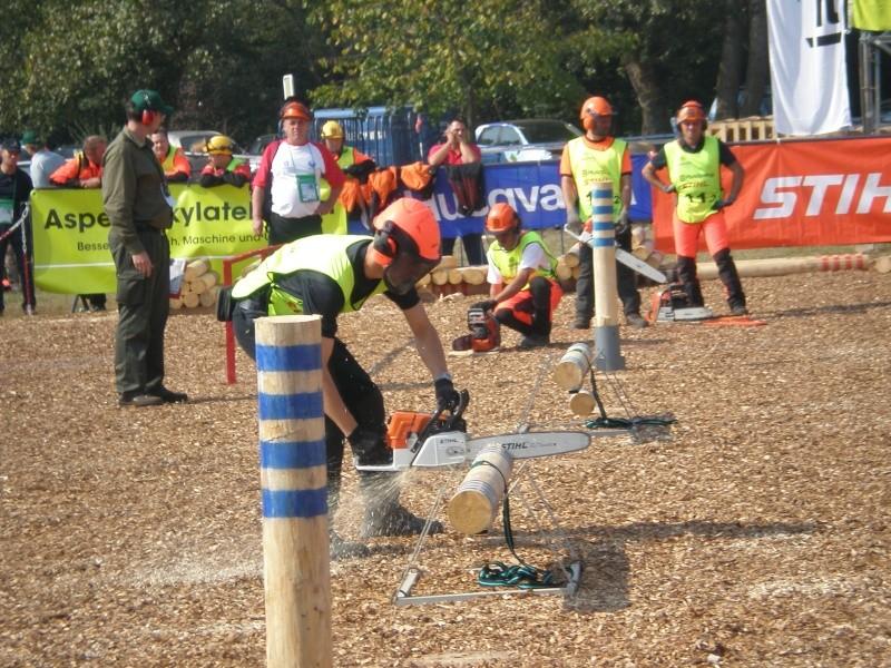Campionato mondiale IALC dei boscaioli in Croazia dal 23 al 27 Settembre P9250012