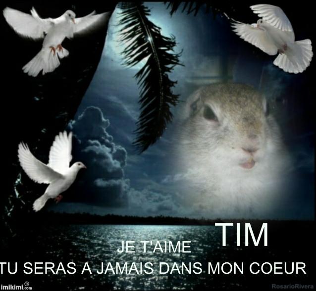 aurevoir mon amour de Tim Njcr-110