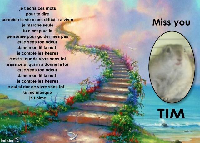 aurevoir mon amour de Tim Njcr-111