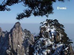 La Chine sac au dos (14): Ascension du Huangshan 黄山 sous la neige les 9 et 10 février 2008 2_pins11