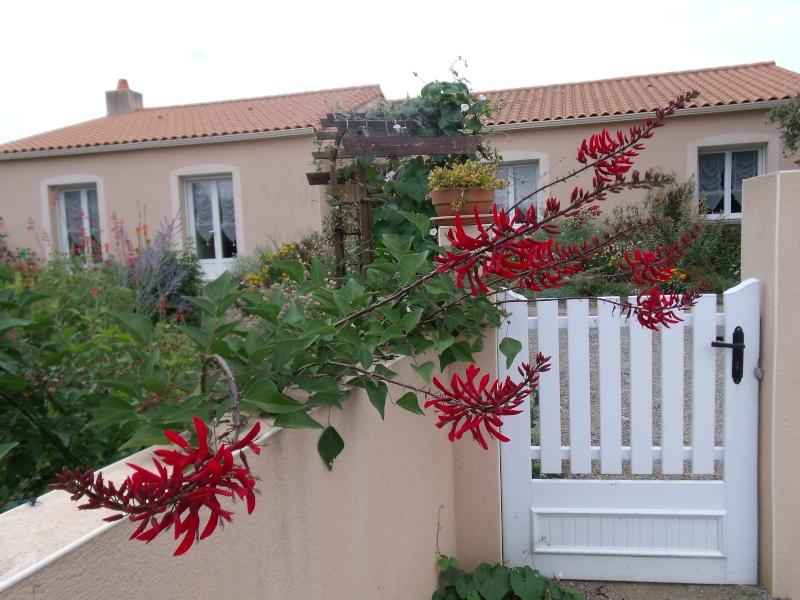 Acclimatation Des Erythrines dans l'Ouest de la France - Page 3 E_x_bi11