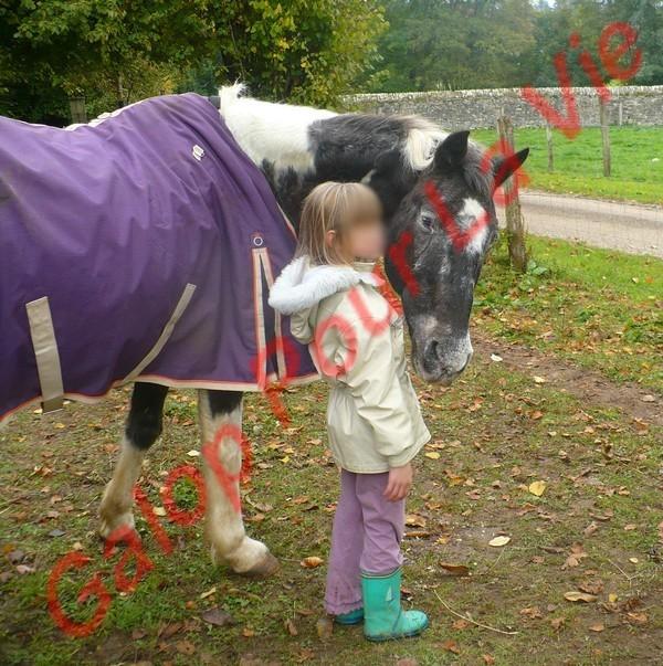 LADY - ONC née en 1987 - adoptée en janvier 2011  par Mélanie Lady_c10