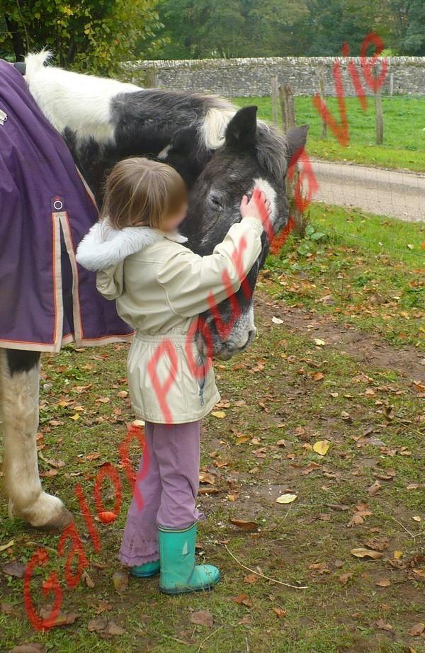 LADY - ONC née en 1987 - adoptée en janvier 2011  par Mélanie Lady_c11