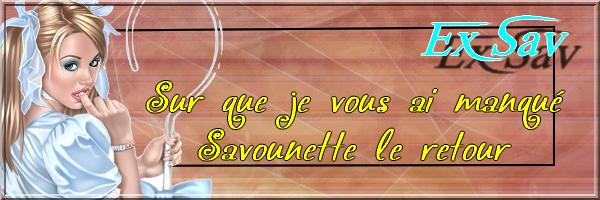 bannières par ljd sue.lee  Savoun10