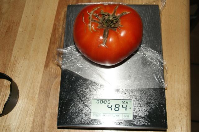 poivrons et tomates. Dsc00810