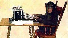 La faune haïtienne compte-t-elle des singes? You bet... Monkey10