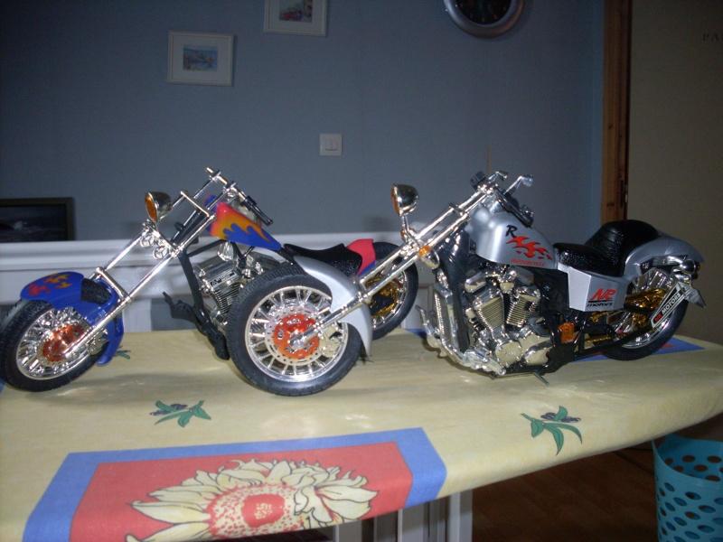 mick141 custom  Sdc14211