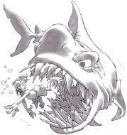 A quand une bouff section tri? Shark510