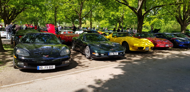 16. Corvette Sunday der Corvettenfreunde Kurpfalz in Ladenburg 5.5.2019 20190543