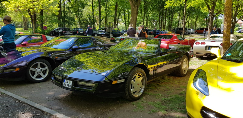 16. Corvette Sunday der Corvettenfreunde Kurpfalz in Ladenburg 5.5.2019 20190582