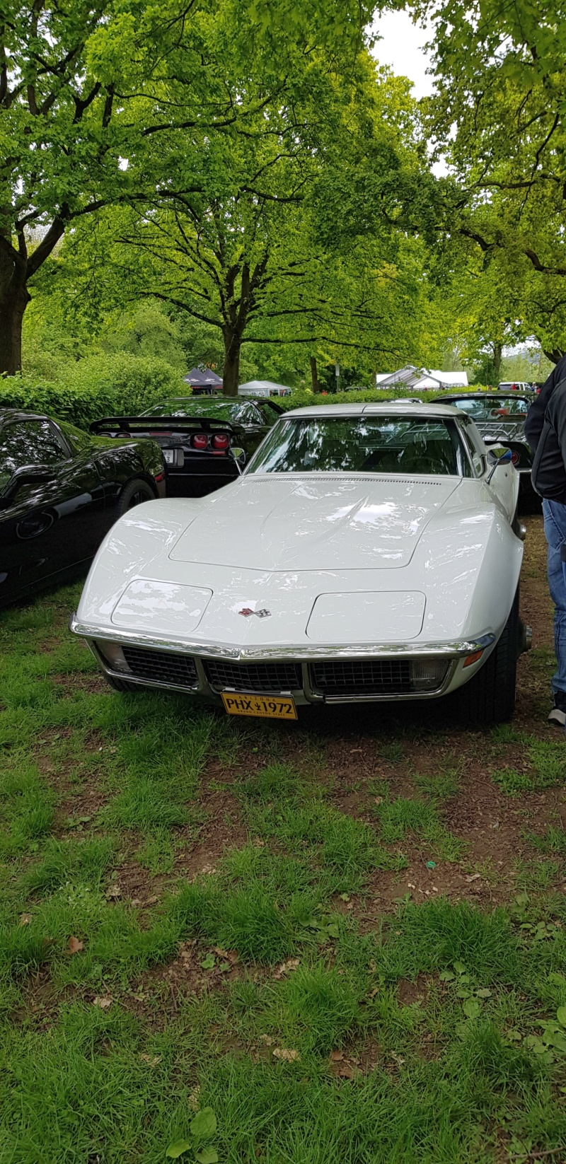 16. Corvette Sunday der Corvettenfreunde Kurpfalz in Ladenburg 5.5.2019 20190592