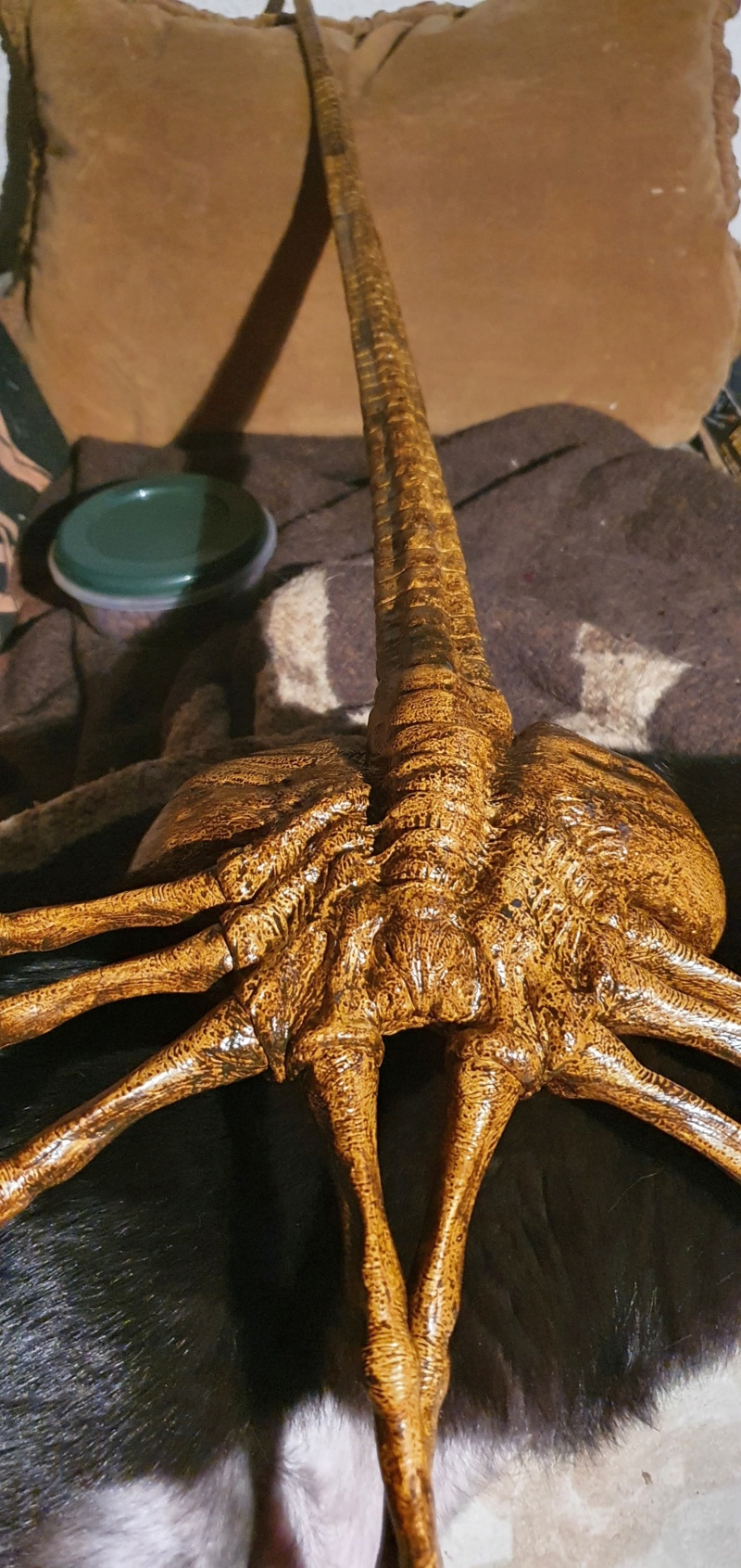 Baubericht Facehugger aus Alien und Aliens 1:1 (Livesize)Bausatz von Indymodel88 20210154
