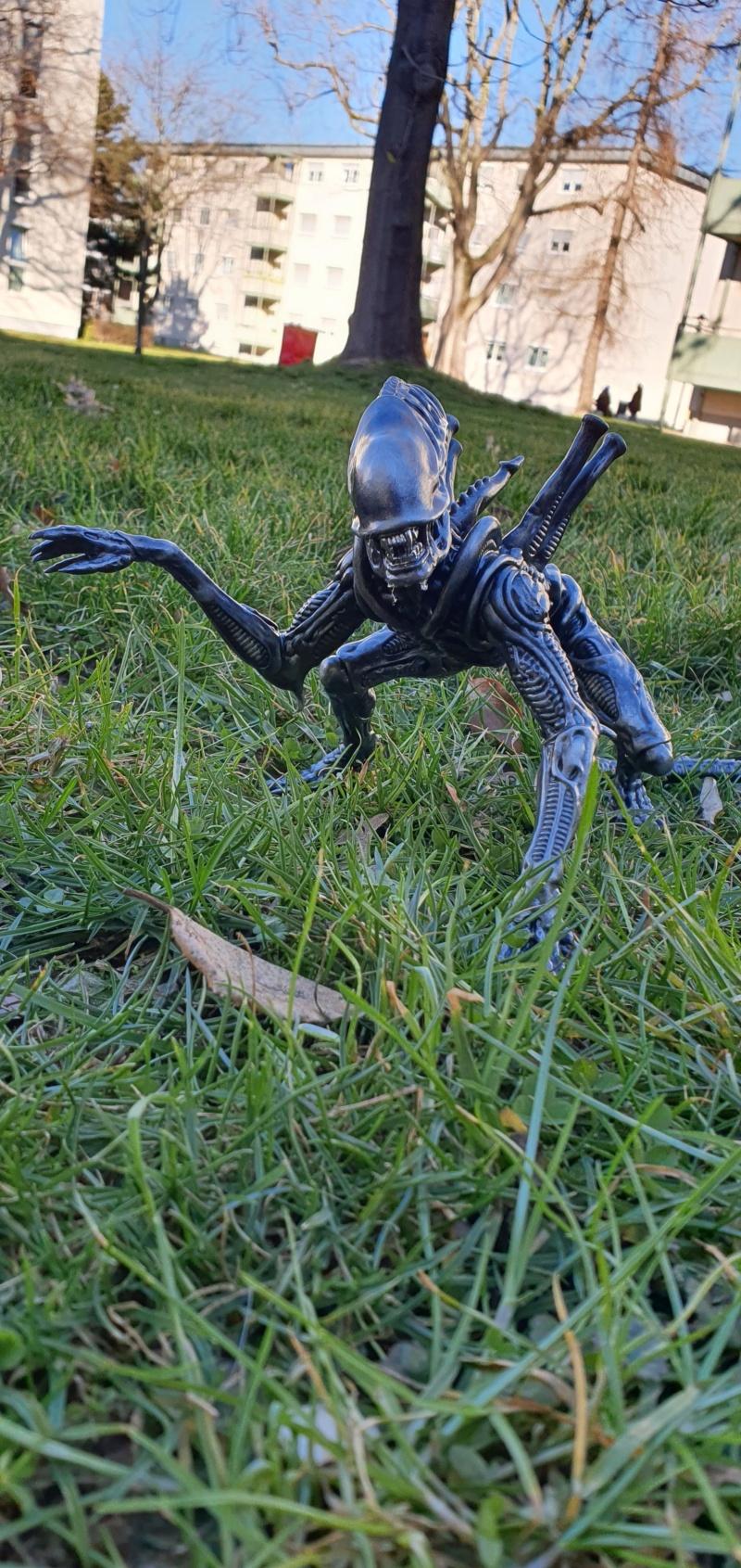 Alien aus dem Game Alien vs Predator von 2010, 1:6 Elfin Models 20210421