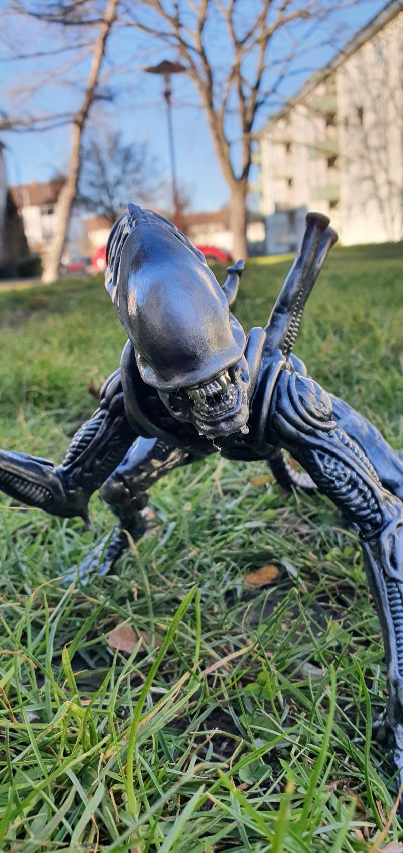 Alien aus dem Game Alien vs Predator von 2010, 1:6 Elfin Models 20210430