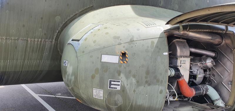 Transall C160 50+99 vom LTG 61 im Technikmuseum Speyer 20210841