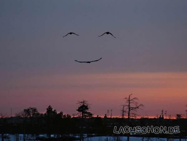 Lustiger Sonnenuntergang Sky_is10