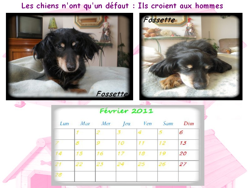 calendrier ! - Page 4 Fevrie10