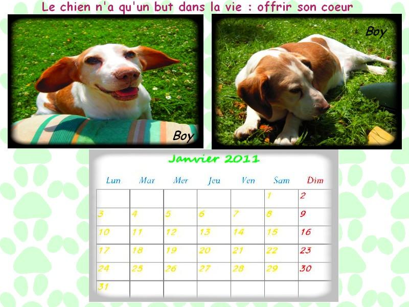 calendrier ! - Page 4 Sans_t10