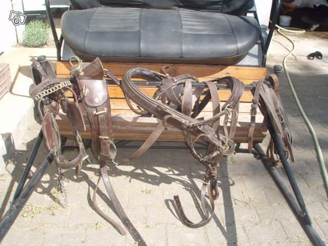 A vendre calèche + harnais cuirs Calach13