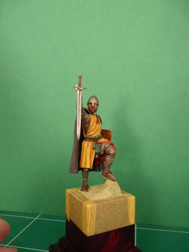 Mes chevaliers en cours P1040518