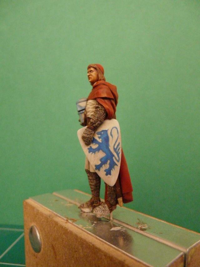 Mes chevaliers en cours P1040523