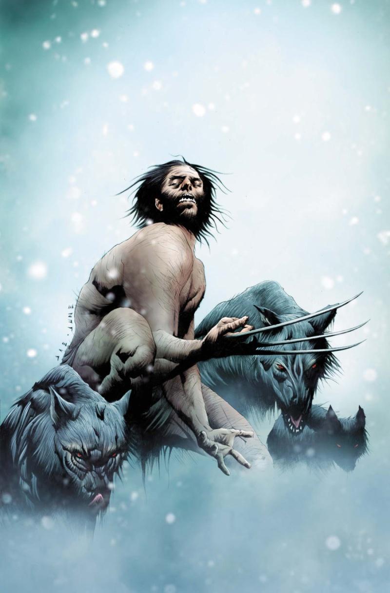 Wolverine #15 & #16 Wolvv211