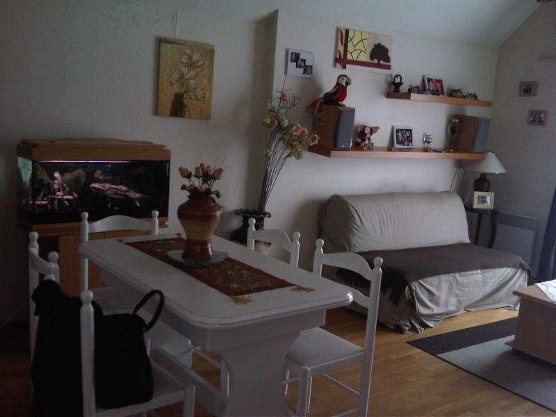 d coration salon. Black Bedroom Furniture Sets. Home Design Ideas