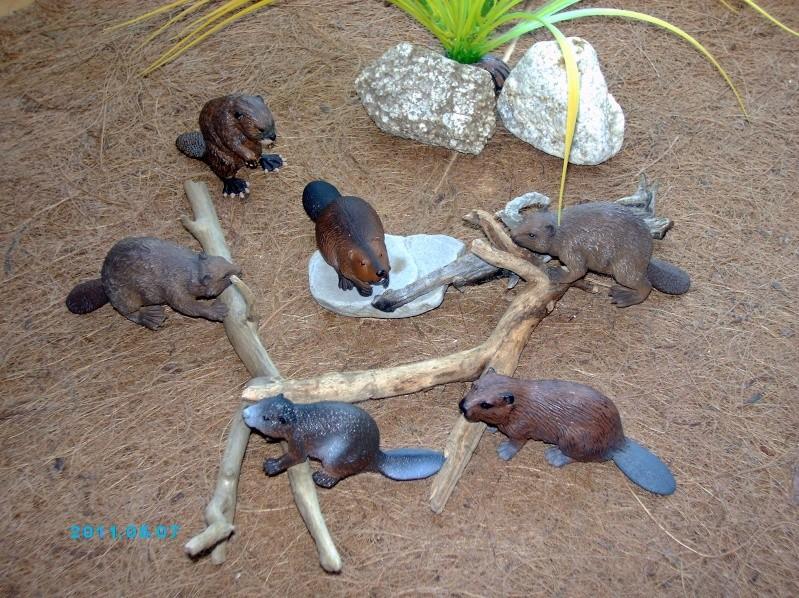 Mojo beaver: the best beaver figurine at the market? Imag0369