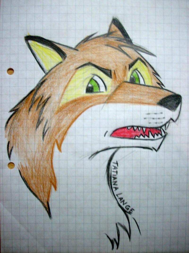 Crush (My first caricature fox) Dscn0810
