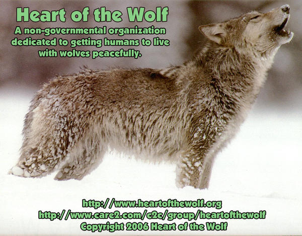 Heart  of  the  wolf .org L_438411