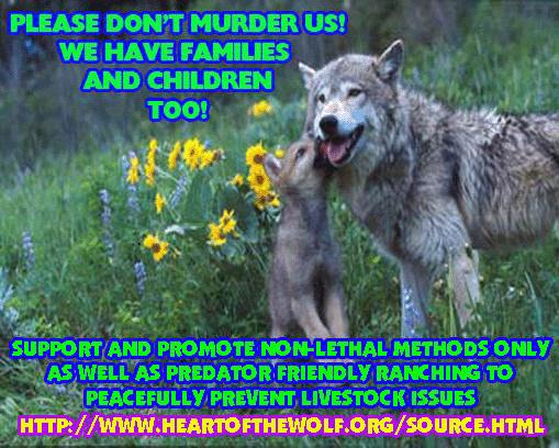 Heart  of  the  wolf .org Pfad111