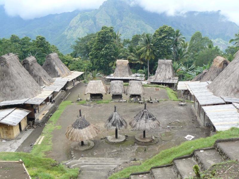 Photographie : Village traditionnel à Florès  Indo2012