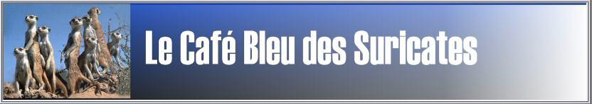 Le Café Bleu des Suricates