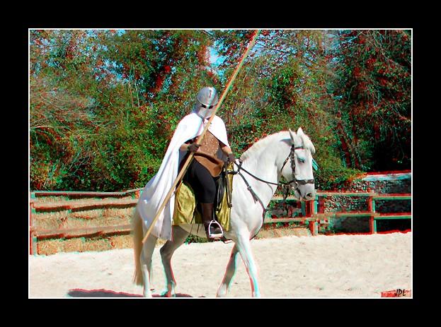 photo 3D du spectacle du plessis saint jean 2010  Cavali10