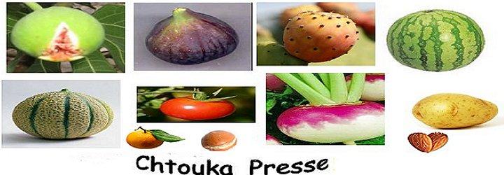 Nouveau Logo Chtouka Presse Chtouk10