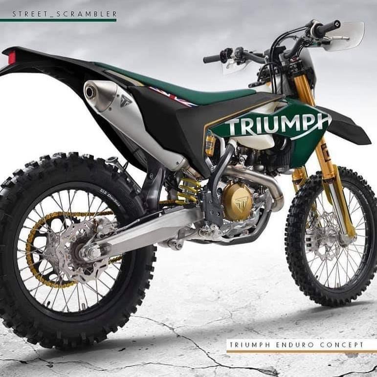 retour de triumph en moto cross et enduro C3d5ba10
