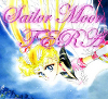 Sailor Moon - The Evil Returns Again Terabu11