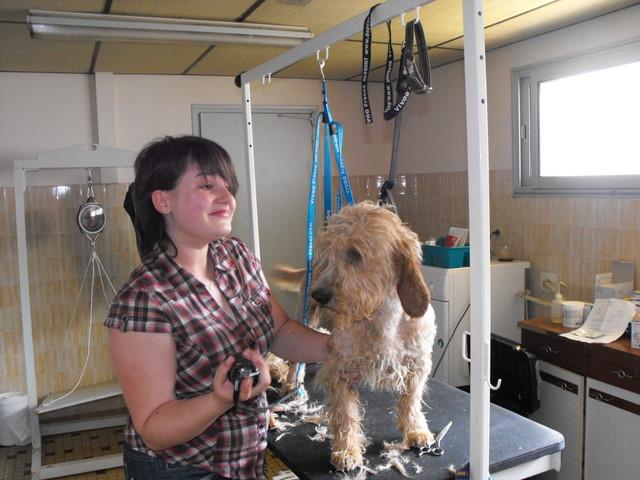 Visite de notre toiletteuse Jennifer Dscf2310