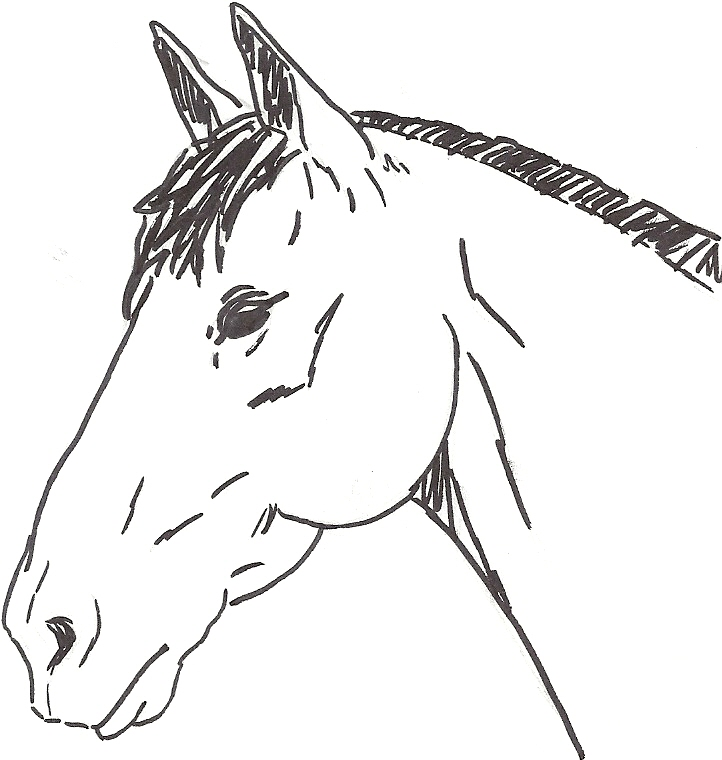 Concours dessins!  Numari12