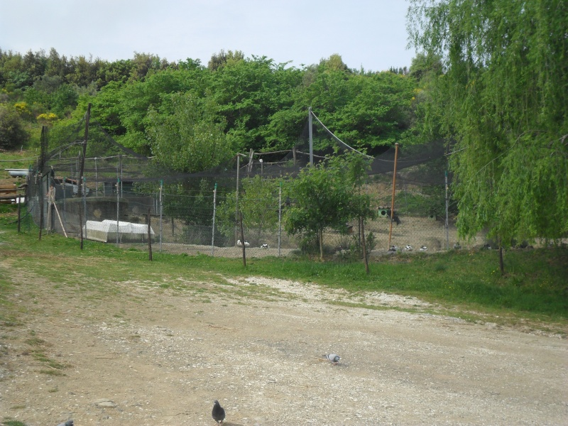 Photos d'un élevage en Italie. Italie45