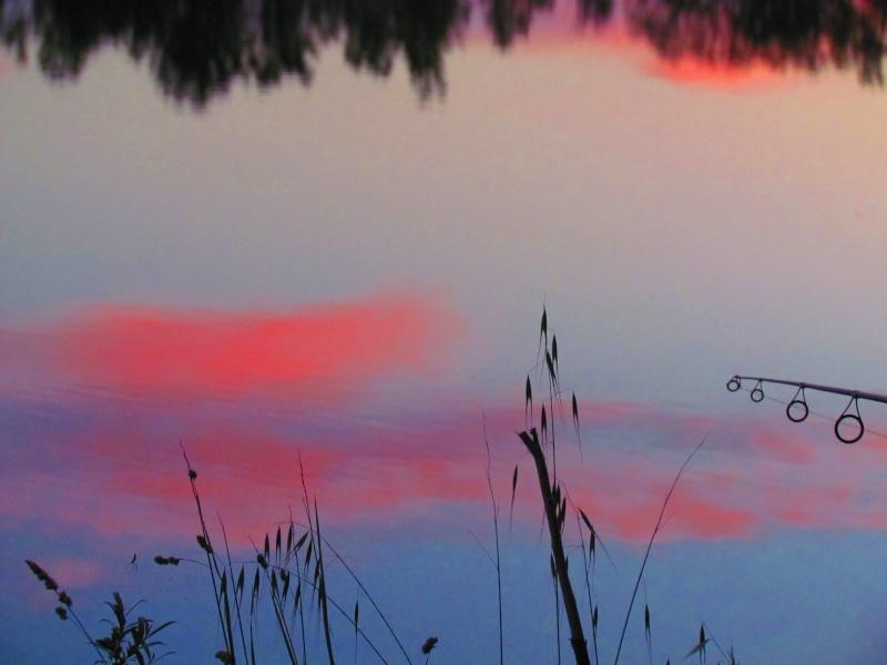 couleurs du soir... Perrie11
