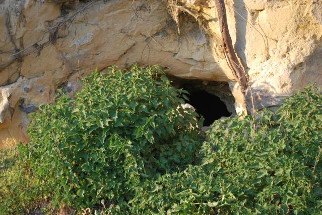 la Basse -Meuse , des grottes et des hommes  Dsc_1237