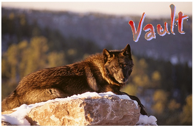 Bear's Wolves Like To Stay HERE (Because Where Else Would They Go?) Vault_10